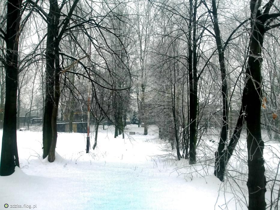 zimowy pejzarz