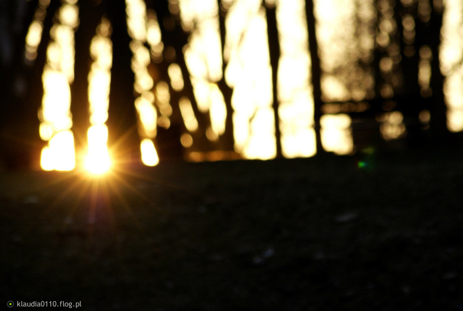 światłość W Ciemności świeci Fotoblog Klaudia0110flogpl