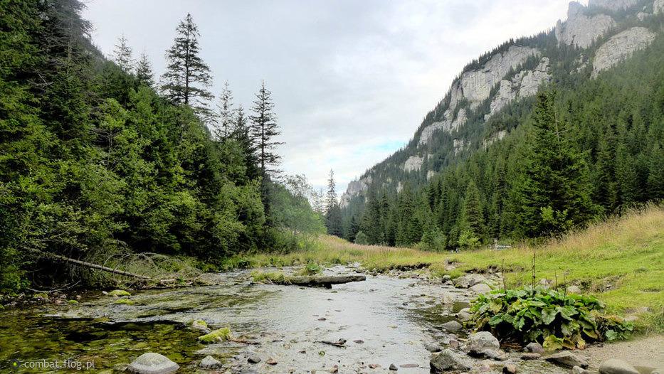 Dolina Kościeliska - Tatrzański Park Narodowy