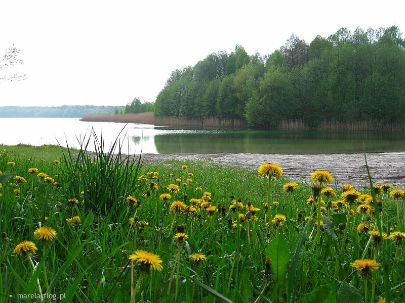 Wiosennie nad jeziorem...