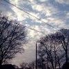 Poranne jesienne niebo... :: Miałam pisać, że nie lubi<br />ę takich nagich drzew, a <br />potem stwierdziłam, że ma<br />ją jednak w sobie