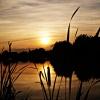 miłego wieczoru i dobrej <br />nocki:)