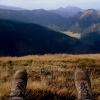 448. Jesienią góry są naj<br />szczersze.  ::  Zaczniemy od zagadki. Je<br />żeli ktoś dokładnie tydzi<br />eń temu wyleczył anginę, <br />dokładnie cztery d